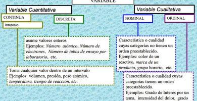 variable estadística