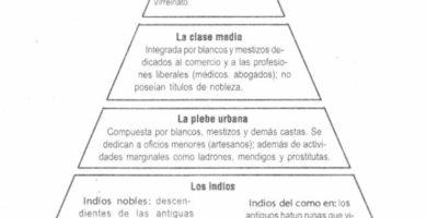 Organización social del virreinato