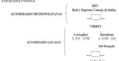 Organización política del virreinato