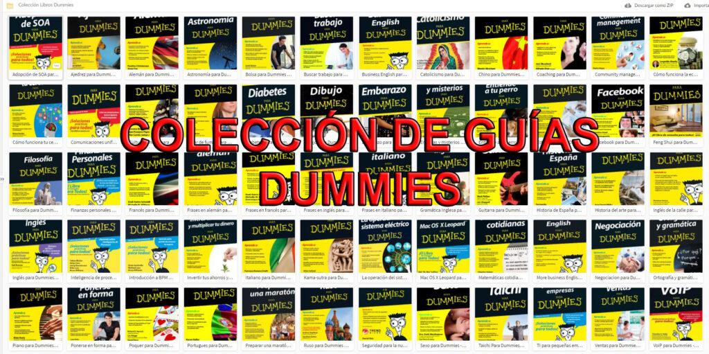 Para dummies libros PDF